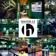 Haven 12 Gedempte Ha